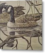 A Pair Of Ducks Metal Print