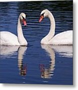 A Pair Of Swans Metal Print