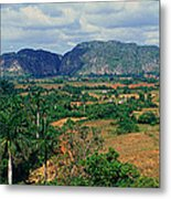 A Panoramic View Of The Valle De Metal Print