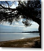 A Park With Tranquil Moments Metal Print