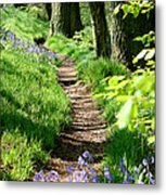 A Path Through An English Bluebell Wood In Early Spring Metal Print