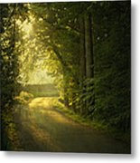 A Path To The Light Metal Print