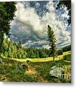 A Peacful Yosemite Day Metal Print
