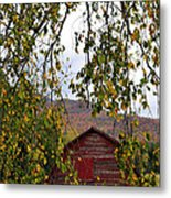 A Peak Of Fall Red Barn Metal Print