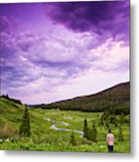 A Person Stand In A Field Watching Metal Print