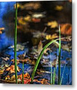 A Place Called Home Metal Print