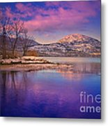 A Purple Surrender Metal Print