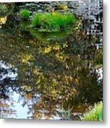 A Quiet Little Pond Metal Print by Ira Shander