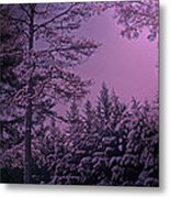 A Quiet Snowy Night Metal Print