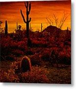 A Red Desert  Metal Print