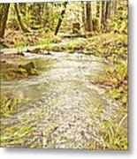 A River Of Green Metal Print