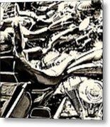 A Roar Of Thunder Metal Print