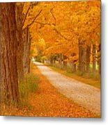 A Romantic Country Walk In The Fall Metal Print