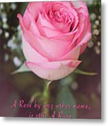 A Rose By Any Other Name Is Still A Rose Metal Print