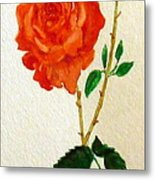 A Rose For Rosa Metal Print