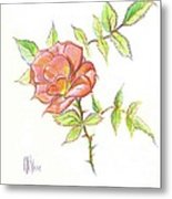 A Rose In Brigadoon Metal Print