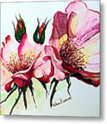 A Rose Is A Rose Metal Print by Karin  Dawn Kelshall- Best