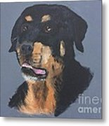 A Rottie Named Thor Metal Print