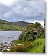 A Scene From Kerry Metal Print