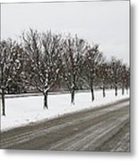 A Sequence Of Trees Metal Print
