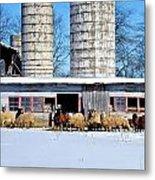 A Sheepish Winter's Day Metal Print
