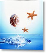 A Shell And Two Starfish Floating Metal Print