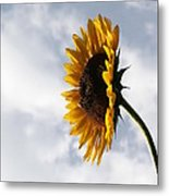 A Side Of Sunflower Metal Print