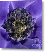 A Sky Full Of Lighters Metal Print by Holley Jacobs