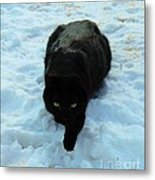 A Small Panther In The Snow Metal Print by Cheryl Poland