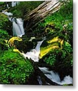 A Small Slice Of Paradise Metal Print