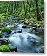 A Small Song In The Big Beauty Metal Print