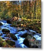 A Smoky Mountain Autumn Metal Print