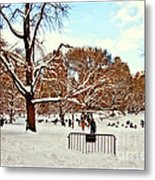 A Snow Day In Central Park Metal Print