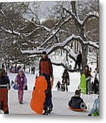 A Snow Day In The Park Metal Print