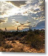 A Sonoran Desert Sunset  Metal Print