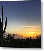 A Sonoran Sunrise  Metal Print
