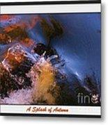 A Splash Of Autumn Metal Print