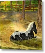 A Spot In The Sun Metal Print