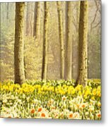 A Spring Day Metal Print by Jasna Buncic