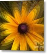 A Star Flower Metal Print