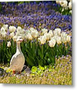 A Stone Duck Statue  Metal Print
