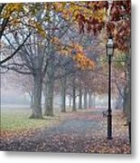 A Stroll In Salem Fog Metal Print