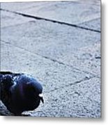 A Stroll In The Piazza  Metal Print