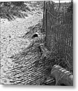 A Stroll In The Sand Metal Print