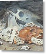 A Study Of Skulls Metal Print