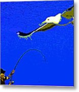 A Surf Fisherman Metal Print