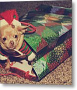 A Sweet Christmas Surprise Metal Print by Laurie Search