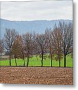 A Tale Of Two Fields Metal Print