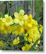 A Taste Of Yellow Metal Print