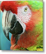 A Thing Of Beauty Is A Joy Forever Metal Print